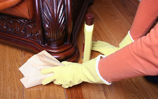 Cleaning of the Furniture & Fixtures